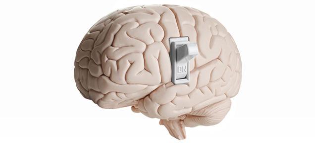 switch à on sur un cerveau
