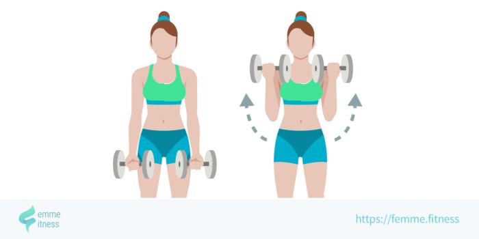 dessin de l'exercice de musculation de la flexion des biceps
