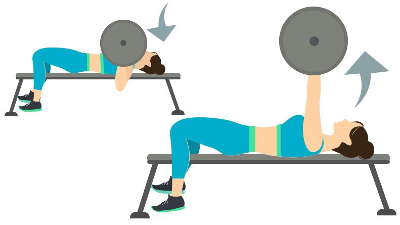 dessin démonstratif de l'exercice de musculation du bench press plat