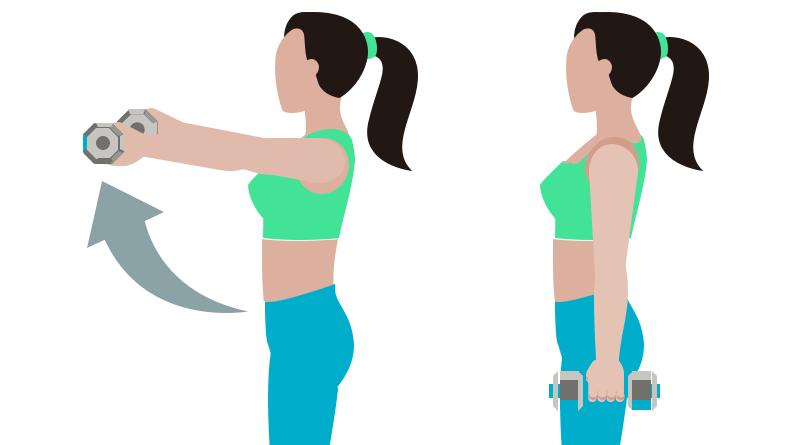 dessin démonstratif de l'exercice de musculation de l'élévation frontale