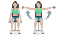dessin démonstratif de l'exercice de musculation de l'élévation latérale avec haltères assis