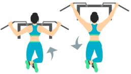 dessin démonstratif de l'exercice de musculation du pull up