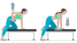 dessin démonstratif de l'exercice de musculation du rowing à un bras avec haltères