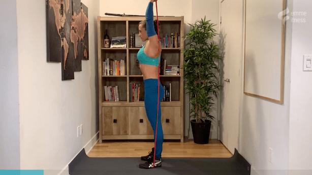 exercice du tricep extension au-dessus de la tête